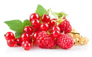 польза ягод для организма